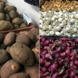 Seed Potatoes / Onion Sets